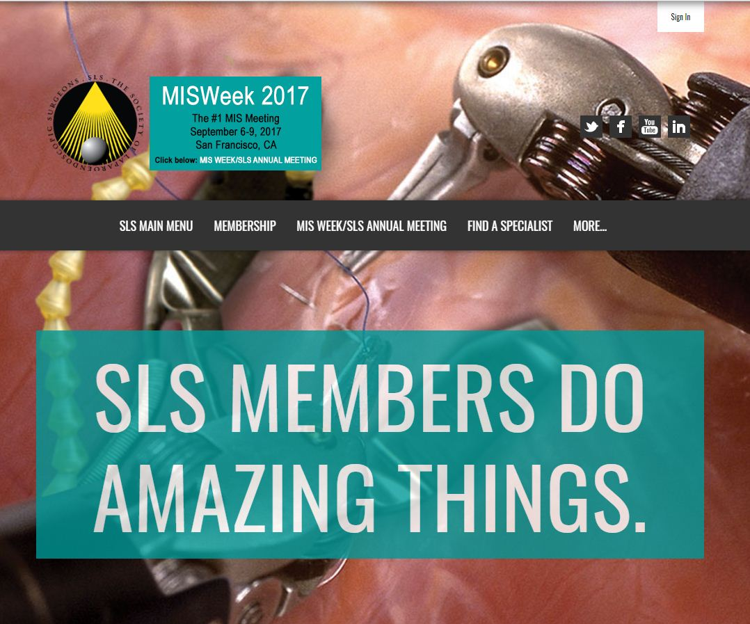 Society for Laparoendoscopic Surgeons